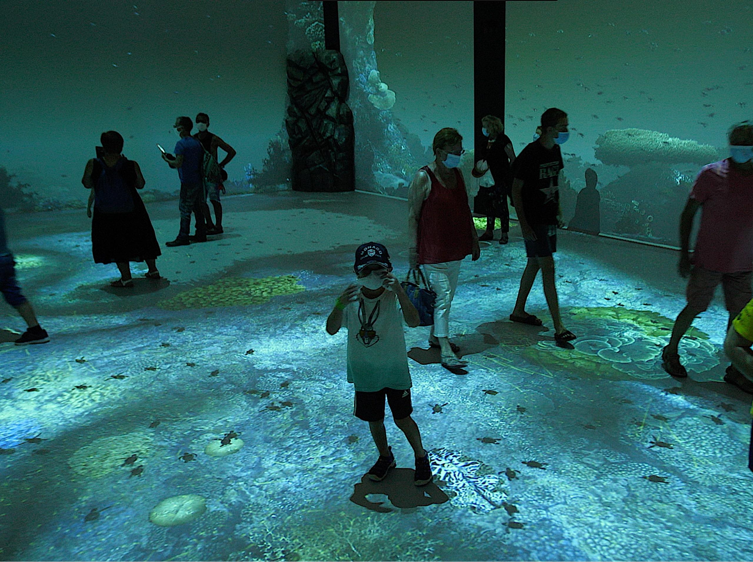musée océanographique immersion
